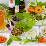 La OMS prueba las plantas medicinales como receta contra el coronavirus